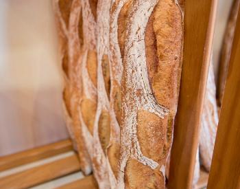 dépot de pain